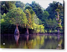 Morning Reflections Acrylic Print