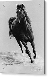 Morning Romp Acrylic Print