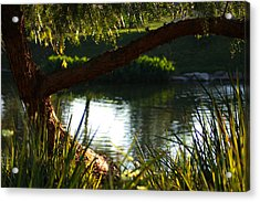 Acrylic Print featuring the photograph Morning Serenity by Richard Stephen