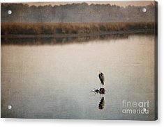 Morning Solitude Acrylic Print by Joan McCool