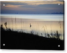 Morning Solitude Acrylic Print by Michele Kaiser