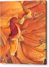 Morning Splendor Acrylic Print by Sandy  Haight