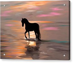 Morning Stroll On The Beach Acrylic Print by Angela A Stanton