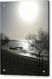 Morning Sun Acrylic Print by Andreea Alecu