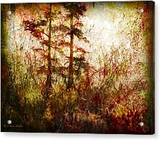 Morning Sunrise Burst Of Color Acrylic Print by J Larry Walker