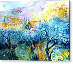 Morning Sunrise In A Tuscan Olive Grove Acrylic Print by Trudi Doyle