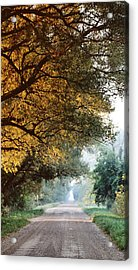 Morning Walk Acrylic Print by Sarah Boyd