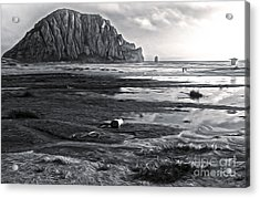 Morro Bay - Morro Rock - Desaturated Acrylic Print by Gregory Dyer