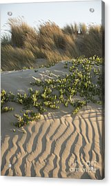 Acrylic Print featuring the photograph Morro Beach Textures by Terry Garvin