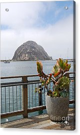 Acrylic Print featuring the photograph Morro Rock At Morro Bay by Debra Thompson