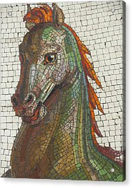 Acrylic Print featuring the photograph Mosaic Horse by Marcia Socolik