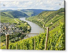 Mosel Area Acrylic Print by Patricia Hofmeester