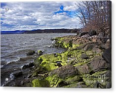 Moss Along The Hudson River Acrylic Print