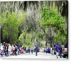 Moss And Massive Crowd Acrylic Print by Patricia Greer