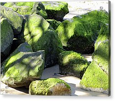 Moss On The Rocks Acrylic Print