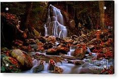 Moss Glen Falls Acrylic Print