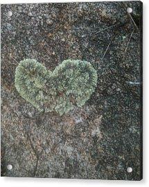 Moss Heart  Acrylic Print
