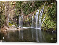 Mossbrae Falls Acrylic Print by Randy Wood