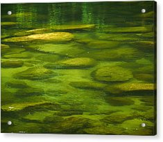 Acrylic Print featuring the photograph Mossman by Evelyn Tambour