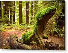 Mossy Creature Acrylic Print