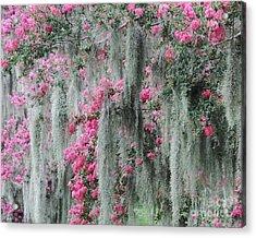 Mossy Crepe Myrtle Acrylic Print