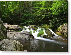 Mossy Falls Acrylic Print by Frozen in Time Fine Art Photography