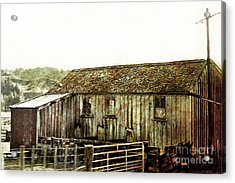 Mossy Shed Acrylic Print by Linde Townsend