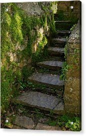 Mossy Steps Acrylic Print by Carla Parris