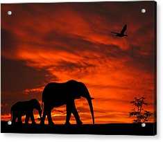 Mother And Baby Elephants Sunset Silhouette Series Acrylic Print by David Dehner