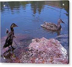 Mother And Child Acrylic Print by Rona Black