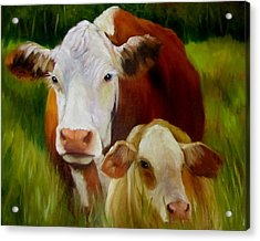 Mother Cow And Baby Calf Acrylic Print by Cheri Wollenberg