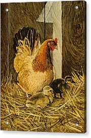 Acrylic Print featuring the painting Mother Hen by Steve Spencer
