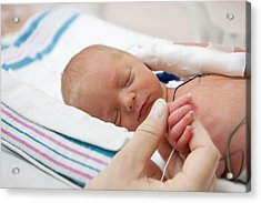 Mother Holdind Hand Of A Premature Baby In Incubator Acrylic Print by Cdwheatley