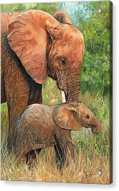 Mother Love 2 Acrylic Print by David Stribbling