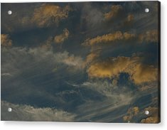 Mother Natures Art S-xix Acrylic Print by Sean Holmquist