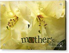 Acrylic Print featuring the photograph Mothers Day by Jean OKeeffe Macro Abundance Art