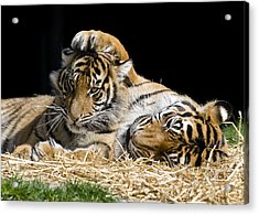 Mothers Loving Touch Acrylic Print