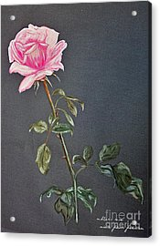 Mothers Rose Acrylic Print by Nina Ficur Feenan