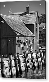 Motif Number One Bw Black And White Rockport Lobster Shack Maritime Acrylic Print by Jon Holiday