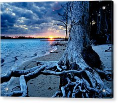 Acrylic Print featuring the photograph Motivational Landscape-faith Hope Overcome-tree Sunset by Eszra Tanner