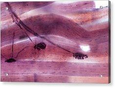 Motor Nerve Ending Acrylic Print