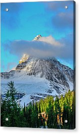 Mount Assiniboine Seen From Sunburst Acrylic Print