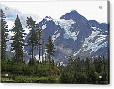 Mount Baker And Fir Trees And Glaciers And Fog Acrylic Print by Tom Janca