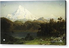 Mount Hood In Oregon Acrylic Print by Albert Bierstadt