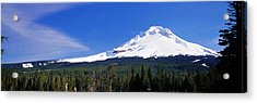 Mount Hood Or Usa Acrylic Print by Panoramic Images