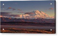 Mount Mckinley - Denali National Park Acrylic Print