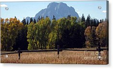Acrylic Print featuring the photograph Mount Moran by Janice Westerberg
