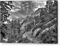 Mount Pilchuck Black And White Acrylic Print