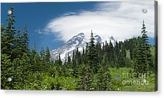 Mount Rainier Forest Acrylic Print