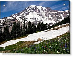Mount Rainier From Paradise Acrylic Print by Bob Noble Photography